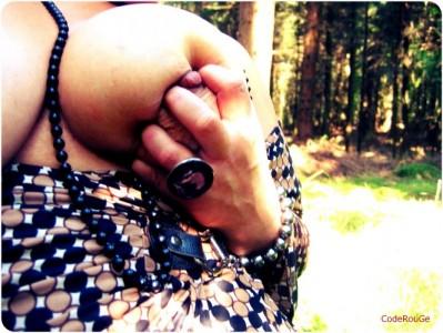 La forêt ....