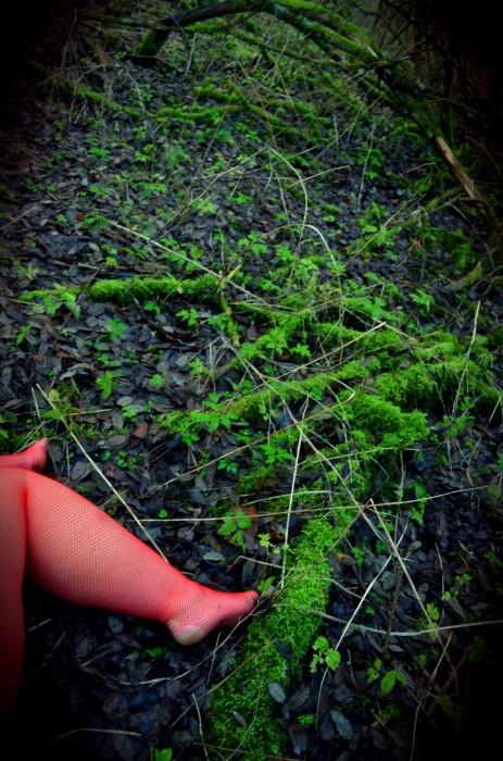 Séance photo en résille rouge dans la forêt