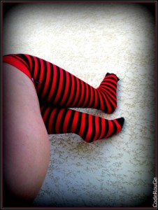 Album photos Red Socks...